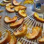 Сухофрукты из яблок дома — три способа приготовления