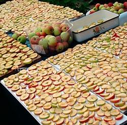 Яблоки на сите
