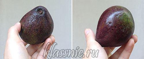 Как выглядит авокадо