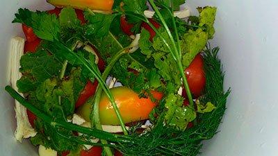Слой зелени и помидоров
