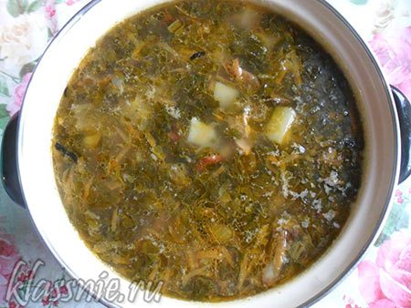 Щавель в супе