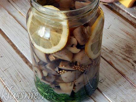 Маринованные шампиньоны с лимоном за 4 часа
